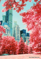 Midtown Manhattan (Rafakoy) Tags: park city blue trees light red summer sky people urban test lake newyork color tree film nature water colors grass skyline architecture 35mm landscape ir photography 50mm daylight pond lab cityscape with natural image centralpark manhattan taken images 200iso scan photograph sample infrared positive process ping ektachrome e6 infra tress 2012 reversal nikonf6 nikonf5 middtown afnikkor50mmf14d aerochrome epsonv600 epsonperfectionv600photo epsonperfectionv600 bw099filter kodakektachromeinfraredeir