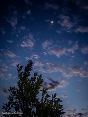 (GuilhermeAntonio) Tags: city moon brasil day sony dia days lua 24 365 paulo antonio sao projeto dias guilherme h9 valinhos