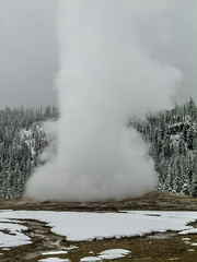 Old Faithful Geyser eruption (andbog) Tags: old panorama usa snow nature canon landscape nationalpark cloudy unitedstatesofamerica oldfaithful overcast natura powershot steam neve yellowstonenationalpark yellowstone states wyoming geyser eruption paesaggio wy faithful compactcamera g12 usnationalpark nuvoloso yellowstonenp uppergeyserbasin canong12