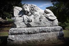 Lion of the Confederacy (peachy92) Tags: atlanta cemeteries usa art cemetery ga georgia us unitedstates unitedstatesofamerica fulton 2012 atlantaga atlantageorgia oaklandcemetery fultoncounty photoscape fultoncountyga fultoncountygeorgia canoneos1000d canoneosdigitalrebelxs