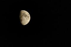 Have a good flight, Neil (Nick O'Lotty) Tags: moon nikon salute flight d70s sigma neil astronaut luna apollo armstrong 70200 astronauta 2x 400mm apollo11