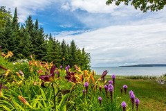 ChristmasMichiganHome-20120725-06 (Frank Kloskowski) Tags: christmas flowers trees clouds chairs guitar michigan daylily upperpeninsula lakesuperior guitarcase pwaterscape