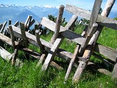 Dinosaurier-Skelett ? / dinosaur-skeleton ? (krinkel) Tags: alps nature canon fence landscape schweiz switzerland weide natur berge pasture alpen zaun landschaft rigi