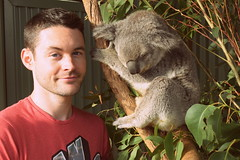 Koala Encounter (Keith Mac Uidhir  (Thanks for 3.5m views)) Tags: sydney australia australian australi  austrlie australien  australie    ausztrlia austrlia   avustralya c   sdney       sidney