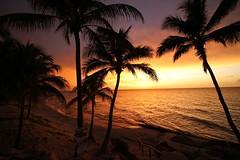 Atardecer dorado (rosa casi roja) Tags: cuba playa palmeras mar sea palm beach sunrise atardecer golden dorado
