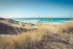 Sola Beach, Norway (B.AA.S.) Tags: beach sola stavanger norway norge rogaland nature natur sea straw sand sanddunes water sunlight daylight day waves sky strand str tranquility traveldestinations scandinavia scenics idyllic