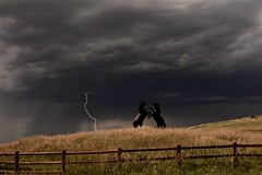 Lightning Ridge (Chamblin1) Tags: lightning stormclouds country colorado fence