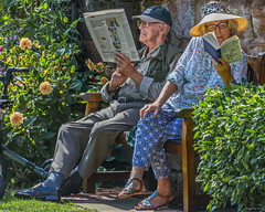 """""""Retired and Loving it"""" (Pensioner Percy) Tags: retired pensioners people d7200 reading nikon18140lens carlisle deathofascholar pensionerpercy"""