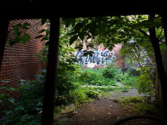 Trespassing (Exile on Ontario St) Tags: montreal graffiti writing throwup urban art montral wall mur murs walls backyard cour plateau plateaumontroyal streetart trespass trespassing arrire back yard letters writers write greenery feuillage vert green glade clairire sunshine rays clearing genius eho brick bricks brique briques gnius weeds mauvaises herbes street urbain mauvaisesherbes mauvaiseherbe mauvaise herbe fence clture