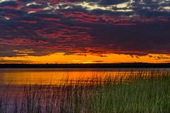Sunrise at the bay... (petec1113) Tags: doorcounty wisconsin rowleysbay sunrise clouds lakemichigan sonya7