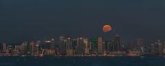 The harvest moon (Laura Y Lin) Tags: sandiego fullmoon moon pinkmoon san diego bay
