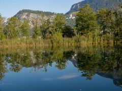 P9040042 (turbok) Tags: landschaft spiegelung wasser c kurt krimberger