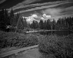 Mirror Lake, Mt Hood, Anne floating on a tree trunk (tmalsburg) Tags: 65mmf4 darktable epsonv700 film ilfordfp4 mamiya7