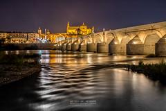 Al Andalus (Luis Sousa Lobo) Tags: img84363 crdoba crdova spain espanha espaa andaluzia andaluca night bridge noite ponte rio cityscape river canon tamron 70d 18200
