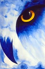 Watching you, by Marina - DSC03999 (Dona Mincia) Tags: art painting watercolor study paper bird animal owl eagle blue eyes arte pintura aquarela pssaro coruja guia olho ave azul