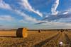 Bottes de pailles : Le retour ! (photosenvrac) Tags: bottepaille nature culture moisson beauce ciel paille nuage paysage thierryduchamp