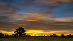 This mornings sunrise.....Explore (Kevin Povenz) Tags: 2016 september kevinpovenz westmichigan michigan ottawa ottawacounty sunrise blue yellow field tree sky clouds canon7dmarkii sigma