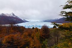 13970309599_3a6d22007f_o (FelipeDiazCelery) Tags: argentina patagonia perito moreno glaciar calafate