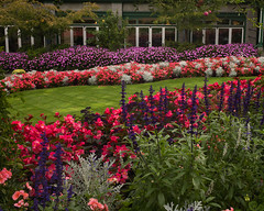 Butchart Gardens (minus6 (tuan)) Tags: minus6