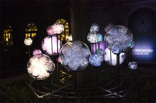 From flickr.com: 'Light' by Bruce Munro -- Longwood Gardens (PA) June 29, 2012 {MID-70531}
