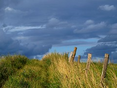 Le bout du chemin **-** (Titole) Tags: sky grass clouds fence track ciel nuages chemin herbe cloture friendlychallenges thechallengefactory titole favescontestsweep nicolefaton