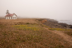 Point Cabrillo, CA lighthouse and coast (Don McCullough) Tags: california lighthouse fog highway1 mendocinocounty pointcabrillo