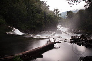 Long Exposure over a River in a Chilean Rain Forest