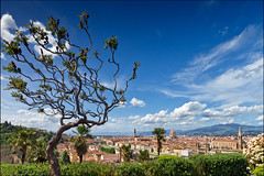 view over florence (heavenuphere) Tags: world park travel italy tree heritage florence site italia view unesco tuscany firenze toscana 1022mm gi traveldestinations
