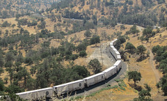 Tehachapi loop (3300) (DB's travels) Tags: california railroad up unionpacific tempcrr