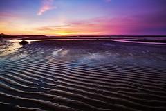 (Digital_trance) Tags: ocean sunset sea bird 20d nature windmill sunrise canon ship taiwan sigma  seafood oyster  lanscape bif           70d   40d    canon40d 5dmarkii 5d2 5dii canon5dmarkii eos5dmarkii canon5d2 canon5dmarkiii 5d3 canon70d 5diii