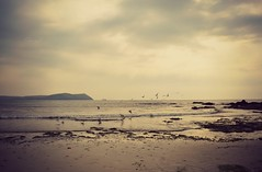 The sea, the sea (Electra_star) Tags: sea sky seagulls beach coast sand cornwall waves polzeath janeybraniganaugustportfolio