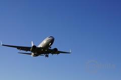 RAAF   Boeing 737-700 BBJ   A36-001   OOL YBCG (coghilla) Tags: airport aviation bbj boeing goldcoastairport military ool raaf aeroplane airplane aircraft ybcg   737700 a36001 vip transport royal australian air force airforce australia
