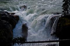 Sunwapta Falls (JoshSellmannPhotography) Tags: mountain jasper glacier icefieldsparkway hwy93 sunwapta highway93