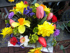 Farmers Market Fresh Flowers (lucidcats) Tags: pink flowers blue red orange white plant flower green beautiful leaves yellow leaf purple farmersmarket blossom bloom vancouverwa thebestyellow