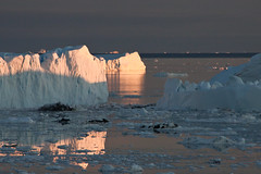IMG_6670 (qitsuk) Tags: sunset ice evening arctic greenland midnight iceberg artic icebergs grnland ilulissat icefjord kangia icefiord midnigtsun kitaa