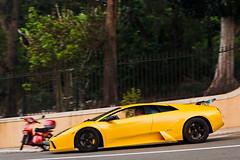 Murcielago (Lambo8) Tags: horse car yellow jaune canon eos photo hp italia power d engine s voiture monaco mc coche mk2 5d af gt lamborghini mid supercar rocher ch mkii murcielago markii v12 mark2 afd principaut hypercar worldcars