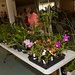 Plant table and bidder