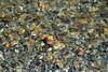colors (SusanCK) Tags: abstract river rocks riverrocks susancksphoto