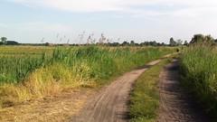 2016 Lato (zbigniewsztobryn) Tags: wakacje serpelice rower kajak natura lubelszczyzna