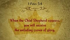 1 Peter 5:4 (joshtinpowers) Tags: peter bible scripture