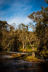 _T5_1222-Edit.jpg (GPTPhotography) Tags: water outing flikr landscape waterfall june noblefalls