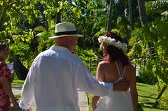 3 Bora Bora (250) (dieter.schultheiss) Tags: bora pearl beach hotel palmen palms traumstrand dreambeach mount otemanu sharks schnorcheln hochzeit marriage bungalow wedding lagune lagoon pool tahiti french polynesia franzsisch polynesien traumurlaub