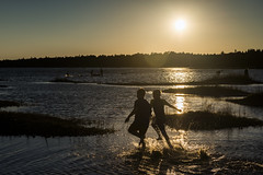 Summer's Play (Ben Roffelsen Photography) Tags: summer water beach ontario play silhouette nikon sunset light sun joy