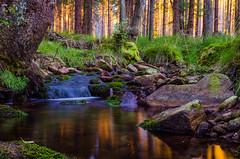 serenity (James Jacques) Tags: longexposure sunrise nature beauty stream nikon d7000