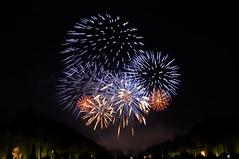 Firework - Grandes Eaux Nocturnes du chteau de Versailles (theMisterNL) Tags: firework versailles chteaudeversailles chateaudeversailles night summer colors