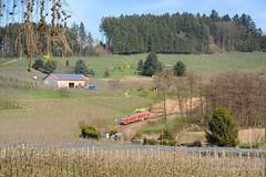 DB REGIO - BODOLZ (Giovanni Grasso 71) Tags: all allgu allgubahn bodolz db regio br612 automotrice diesel nikon d700 lindau hergatz kempten immenstadt kbs970