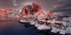 Pink sunrise (sgsierra) Tags: lofoten amanecer sunrise pink rosa red cabins cabañas fiordo agua