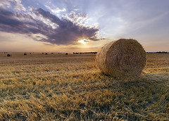 Straw Bales At Sunset (Michael Lesiv) Tags: agricultural agriculture bale bales barley blue cereal cloud countryside crop dry farm farming farmland field gold golden grain harvest hay land landscape meadow natural nature outdoor plant round rural rye sky straw summer sun sunset wheat yellow