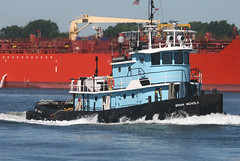 BRIAN NICHOLAS in Staten Island, New York, USA. August, 2016 (Tom Turner - SeaTeamImages / AirTeamImages) Tags: briannicholas blue babyblue tug tugboat vessel water waterway channel spot spotting kvk killvankull tomturner statenisland newyork nyc bigapple unitedstates usa transport transportation marine maritime pony port harbor harbour