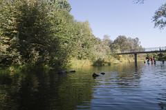 5 Mile Recreational Area